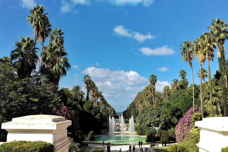 Image of the Botanical Garden of El Hamma in Algiers, Algeria