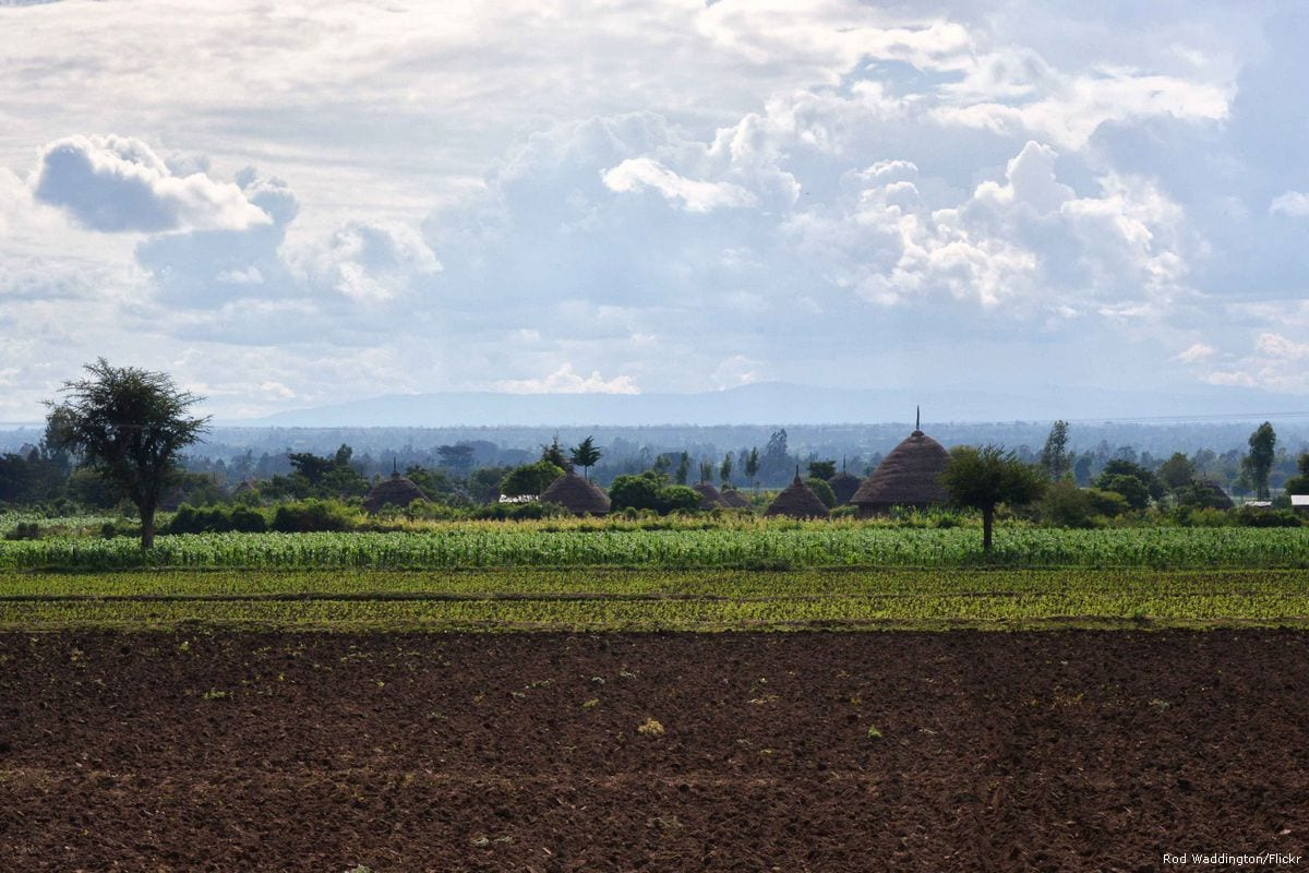 Image of Ethiopian farmland on 16 March 2015 [Rod Waddington/Flickr]