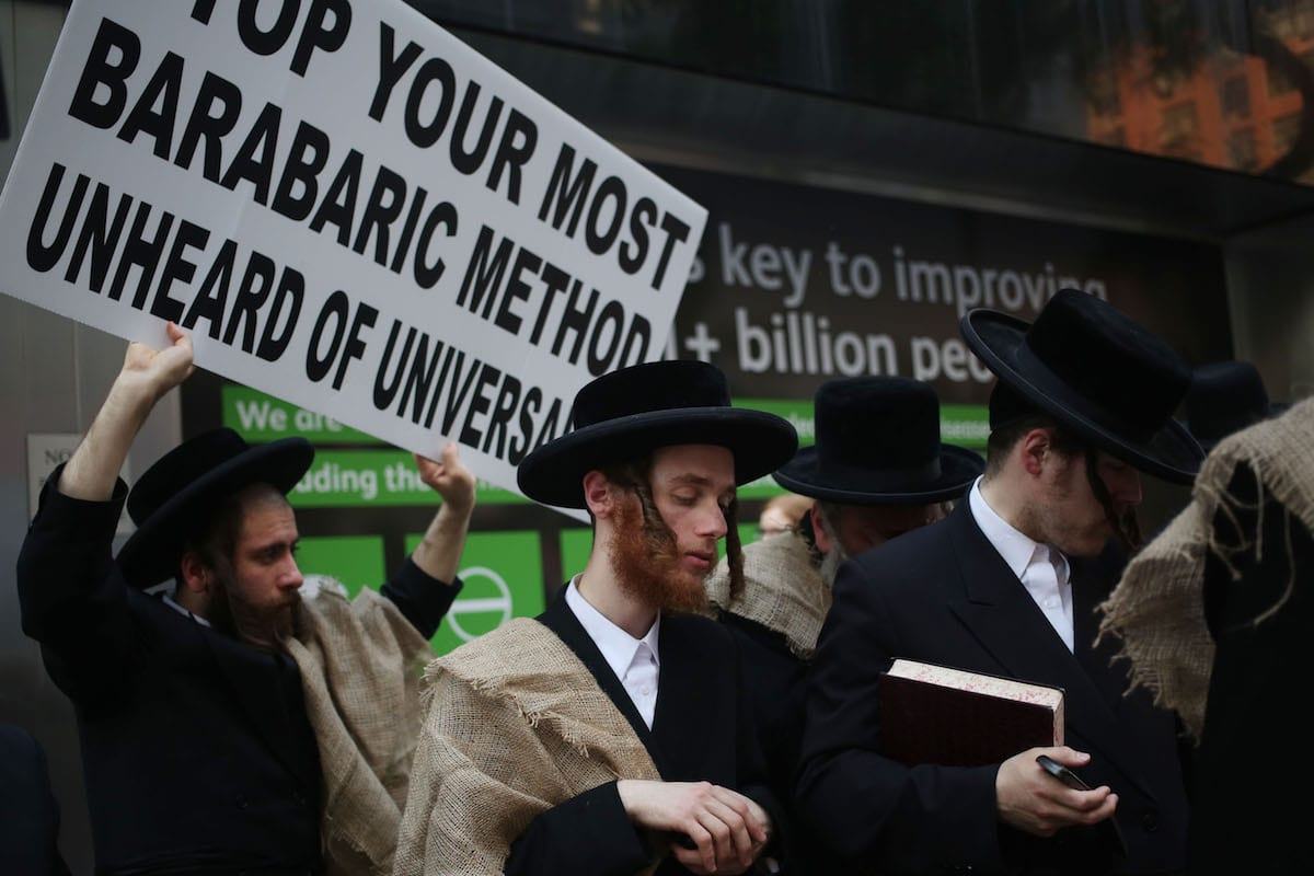 Members of Orthodox Jews protest against compulsory military service in Israel on May 18, 2017 in New York, US [Mohammed Elshamy/Anadolu Agency]