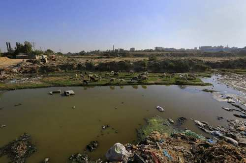 Israelis complain that sewage from the Gaza Strip is polluting their water. Photo of the sewage problem in Gaza.