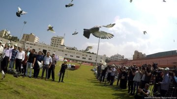 Gazan pigeon race takes flight in Gaza on 18 August 2017. Images By Mohammad Asad