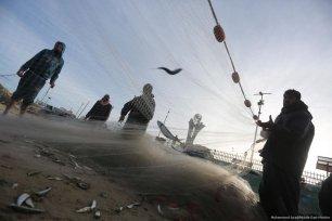 Gaza fishermen catch sardines [Mohammed Asad/Middle East Monitor]