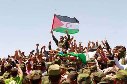 Indigenous Sahrawi people in Tindouf, Algeria on 3 June, 2016 [Reuters]