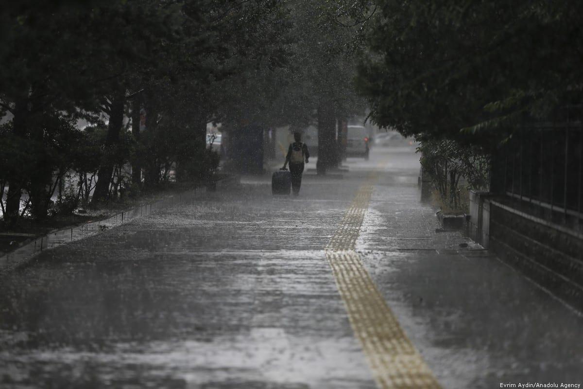 rain puddles - Ipswich First