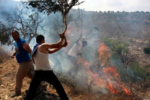 Israel settlers set fire to Palestinian land in West Bank