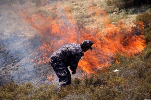 A Palestinian policeman tries to extinguish a fire on their land after Israeli settlers from the settlement of Yitshar burned the fields at the village of Burin near the West Bank town of Nablus, 15 July 2011. A group of Israeli settlers burned vast areas planted with olives in the village , local authorities said. Photo by Wagdi Eshtayah