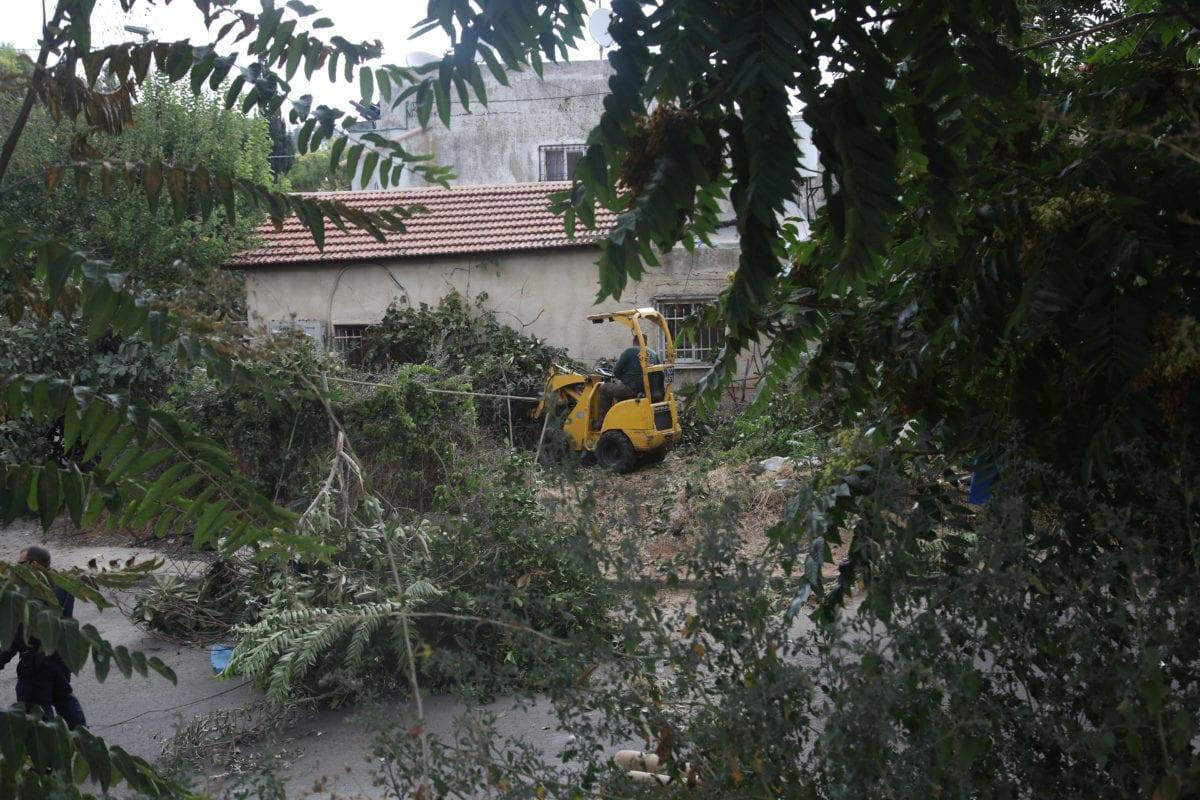 A tree lifter belonging to Israeli settlers uproots trees at Sheikh Jarrah Neighborhood of East Jerusalem on 27 August, 2018 [Mostafa Alkharouf/Anadolu Agency]
