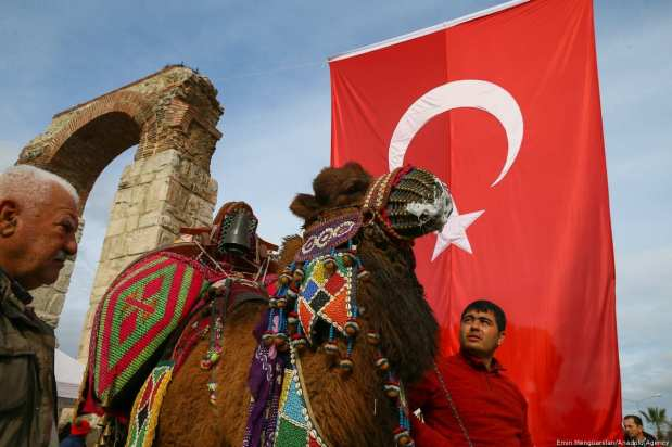 """A camel is seen during the 8th """"Fanciest Camel"""" competition organized within the 37th Traditional Selcuk Efes Camel Wrestling Festival at Selcuk Station Square in Turkey on 19 January 2019 [Emin Mengüarslan/Anadolu Agency]"""