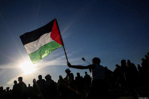 """A Palestinian throws rock as he holds a Palestinian flag in response to Israeli forces' intervention during a protest within the """"Great March of Return"""" demonstrations at Al Bureij Refugee Camp near Gaza-Israel border in Gaza City, Gaza on January 11, 2019. ( Hassan Jedi - Anadolu Agency )"""