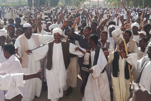 Crowds of supporters of the Sudanese President wave sticks as they gather in Sudan's eastern city of Kassala on 7 January 2019 [AFP/Getty Images]