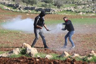 A Palestinian throws back tear gas can in response to Israeli forces' intervention during a protest against discrimination wall and Jewish settlements in Ramallah, West Bank on January 04, 2019. ( Issam Rimawi - Anadolu Agency )