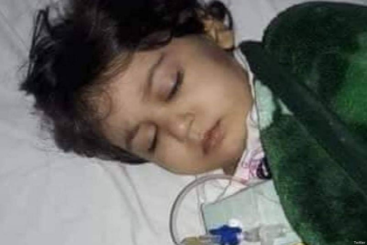 Palestinian girl Maria Tamer Abu Azara dies from cancer in Lebanon after lack of treatment [Twitter]