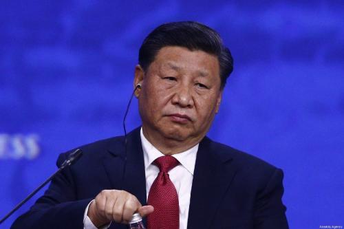 Chinese President Xi Jinping attends the 2019 Saint Petersburg International Economic Forum in Russia on 7 June 2019 [Sefa Karacan/Anadolu Agency]