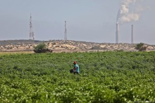 Ashdod seaport in southern Israel seen clearly from adjacent agricultural fields in northern Gaza