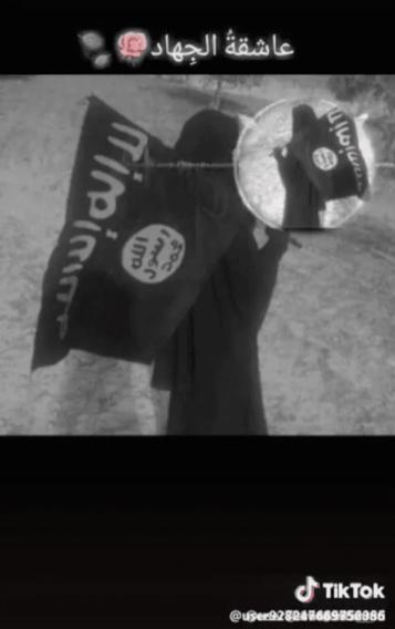 Daesh members on TikTok to propagate its ideology
