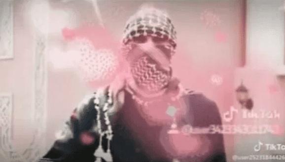 Screenshots show Daesh members on TikTok, prompting its ideology