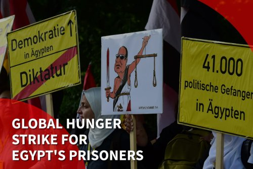 Thumbnail - Global activists plan mass hunger strike in support of Egypt political prisoners