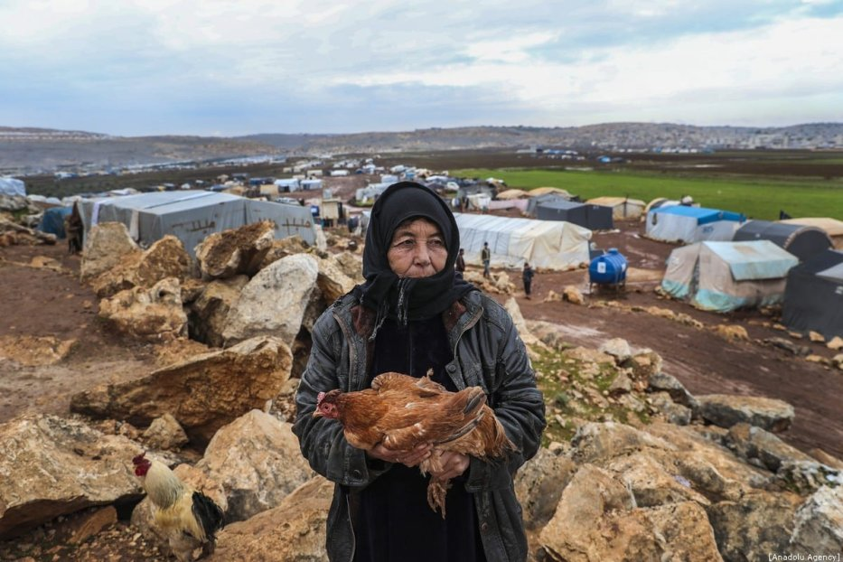 Syrian woman holds a hen at a camp hosting Syrian families, who have been forced to displace due to the attacks carried out by Assad regime and Russia, in Idlib, Syria on 10 January 2020. [Esra Hacioğlu - Anadolu Agency]