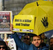 We need to consider how the Egyptian revolution will succeed
