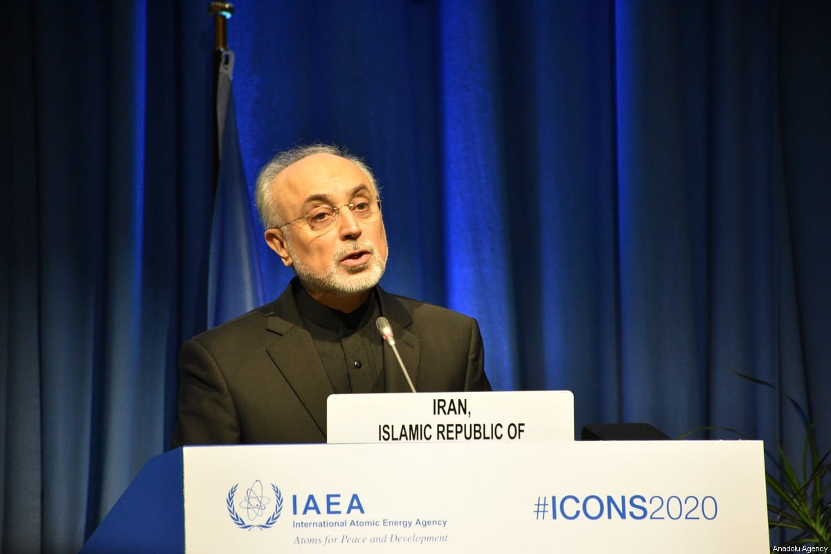 Iran's Head of the Atomic Energy Organization, Ali Akbar Salehi speaks during the International Atomic Energy Agency (IAEA) International Conference on Nuclear Security 2020 in Vienna, Austria on February 10, 2020 [Aşkın Kıyağan - Anadolu Agency]
