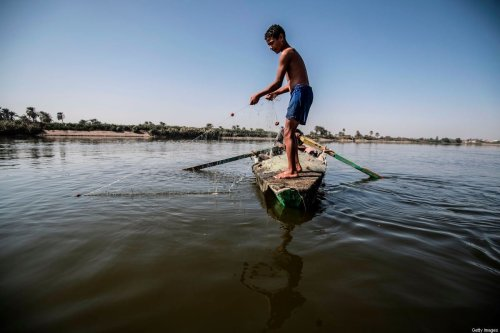 A young Egyptian fisherman pulls his net in the River Nile, south of the Egyptian capital Cairo, on 13 November 2019 [KHALED DESOUKI/AFP/Getty Images]