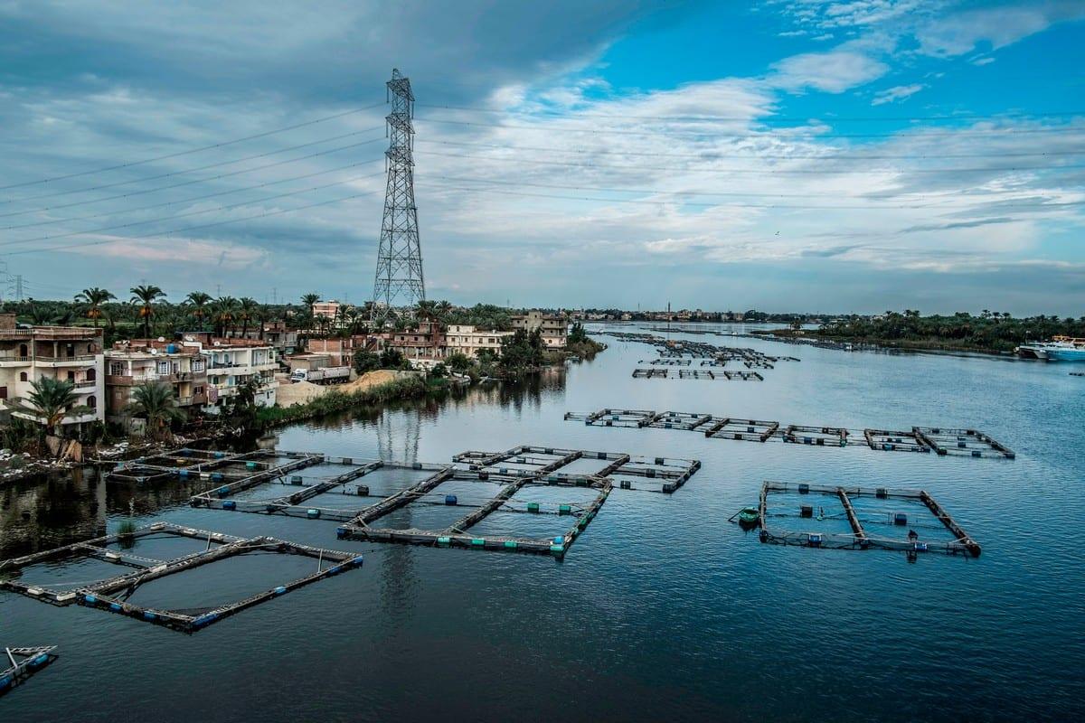 General view of Nile Delta river in Egypt on 29 October 2019 [KHALED DESOUKI/AFP/Getty vImages]