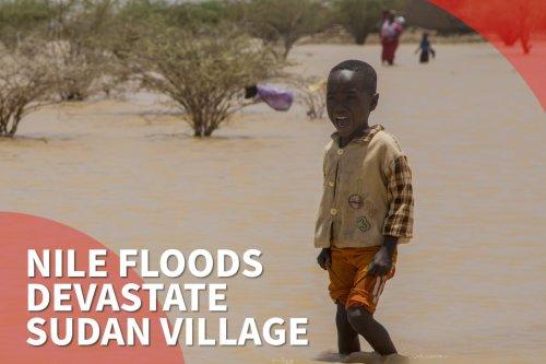 Heavy rains, floods kill 5, destroy 2,382 houses in Sudan
