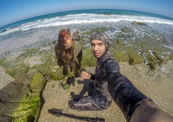 MEMO photographer Mohammed Asad documents Gaza's marine life, in Gaza on 18 October 2020 [Mohammed Asad/Middle East Monitor]