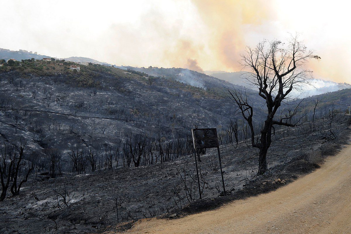 A view of the fire affected forest during a forest fire as ground and aerial extinguishing operations continue in Tizi Ouzou, at Beni Douala town of Algeria on 12 August 2021. [Mousaab Rouibi - Anadolu Agency]
