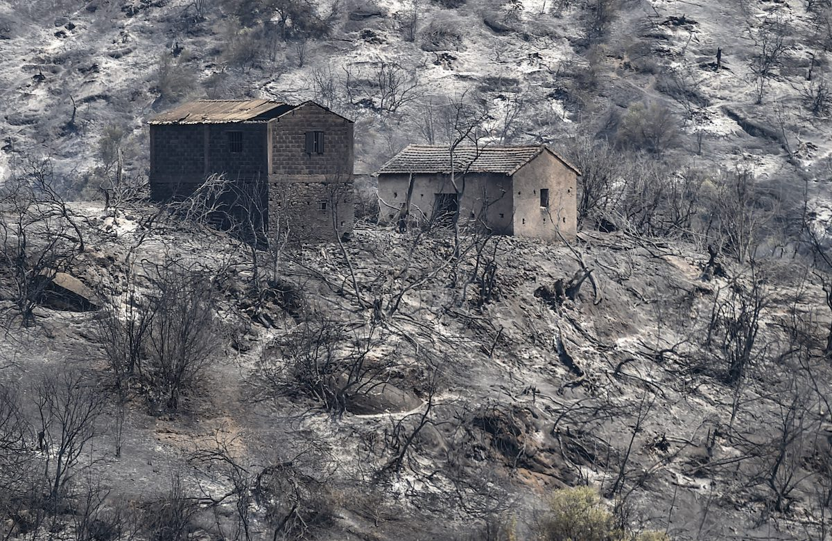 Burned houses stand amidst charred trees, following a wildfire in the forested hills of the Kabylie region, east of the Algerian capital Algiers, on 11 August 2021. [RYAD KRAMDI/AFP via Getty Images]