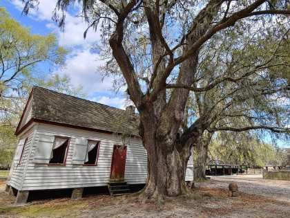 A message from Middleton Place Foundation