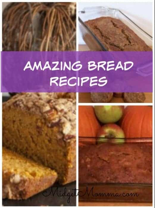 I have gathered some Amazing Bread recipes for you to check out! These are all great ones as a breakfast or a great snack!