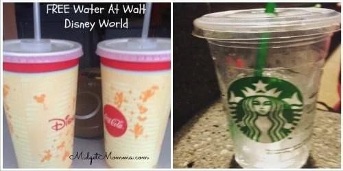 free water at walt disney world