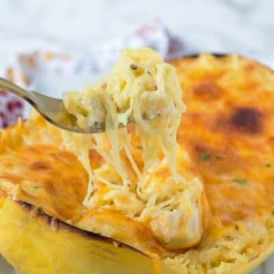Spaghetti Squash Au Gratin. Easy to make meal that is filled with veggies. Spaghetti Squash Au Gratin is the perfect meal for anytime! This Low carb spaghetti Squash recipe tastes amazing and will be a total crowd pleaser!