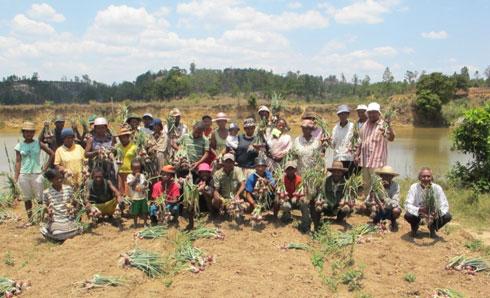 Association Taratra : Premières récoltes d'oignons issues de la culture biologique