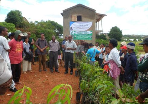 Arboriculture fruitière : Les récoltes attendues après 18 mois
