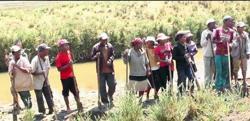 Plaine d'Iandratsay : Des travaux HIMO pour assainir les canaux d'irrigation