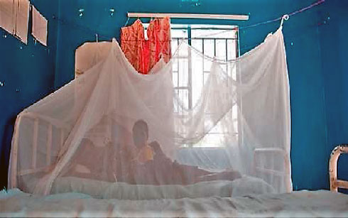 Lutte contre le paludisme : Le détournement des médicaments mis à nu