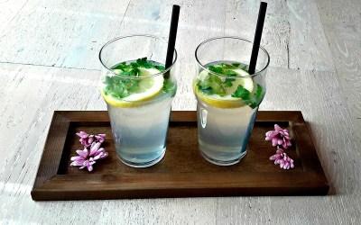 Bien s'hydrater : votre boisson détox de l'été