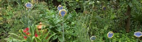 open tuin Dina Scheper 27 juni