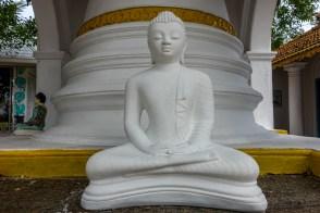 SriLanka-01569