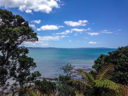 Auckland-4932