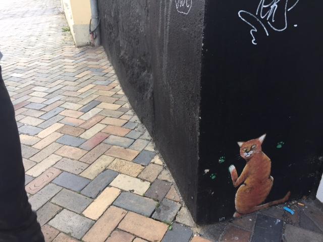 Midlife Sentence | Flensburg Cats