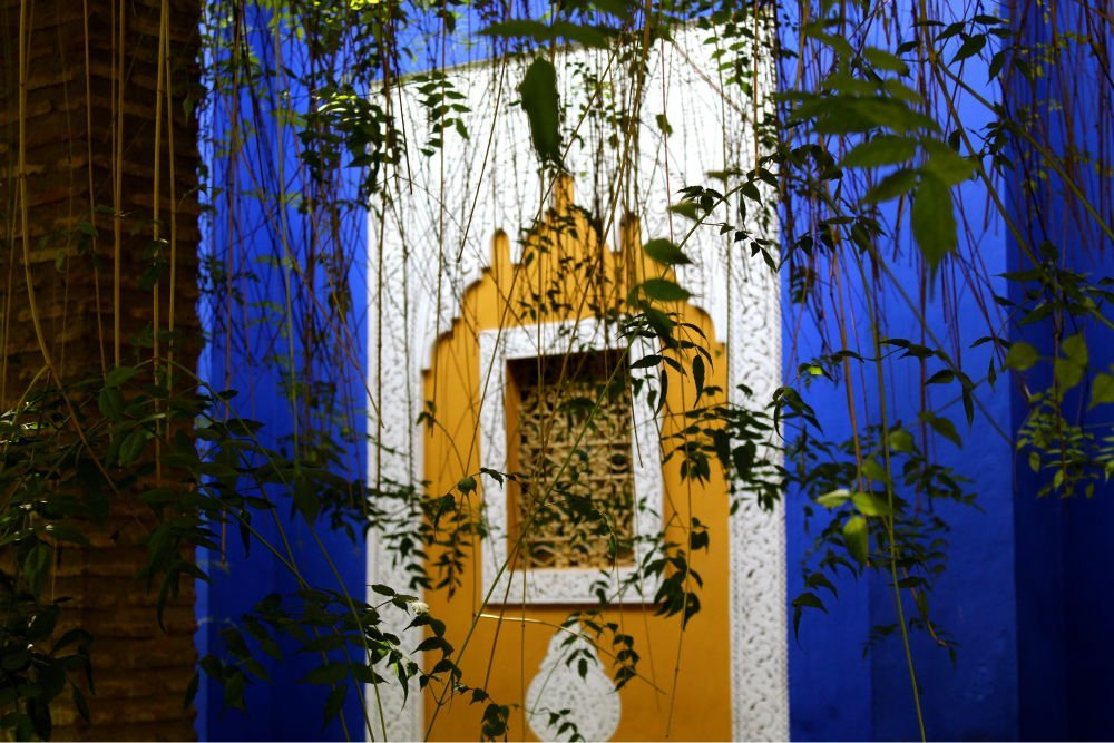 Jardin majorelle blue oasis marrakech morocco for Le jardin yves saint laurent marrakech