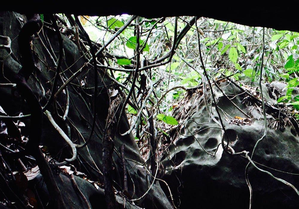 mountkinabalu-borneo-intrepid-midnightblueelephant20150724_0080