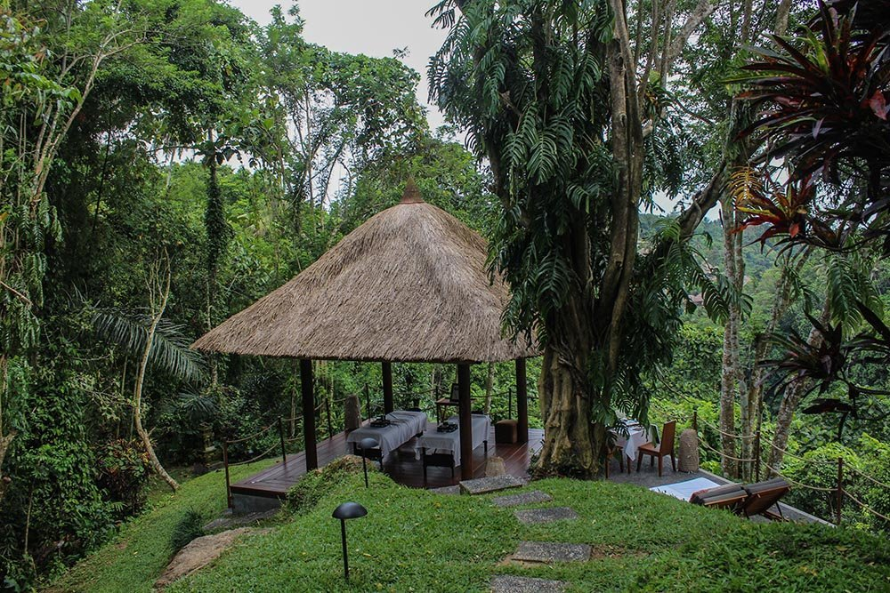 If you are looking for a hotel in Ubud, Bali and to experience the Jungle Book life, monkeys dropping from trees and all, read on...