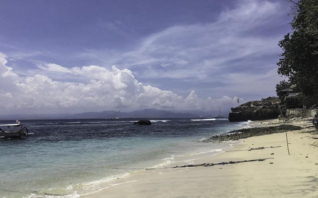 Of Molas & Mantas – Diving in Bali.