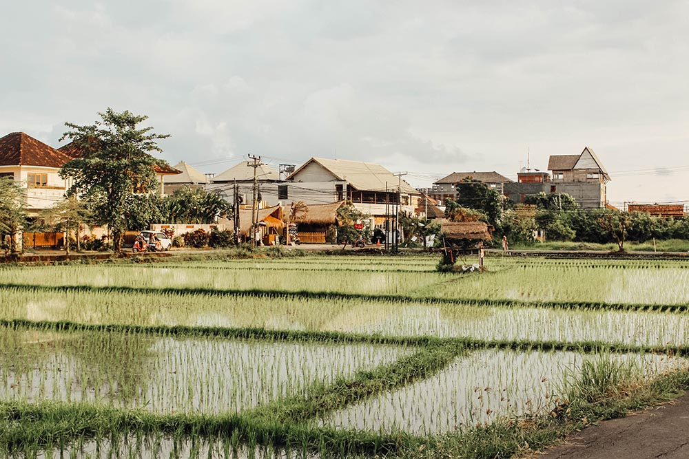 Looking for some great places to eat in Bali? I am sharing my favorite Canggu restaurants for foodies, vegans, and hipsters.