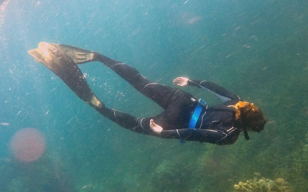 Breathless in Thailand: The best Course for Freediving, Koh Tao.