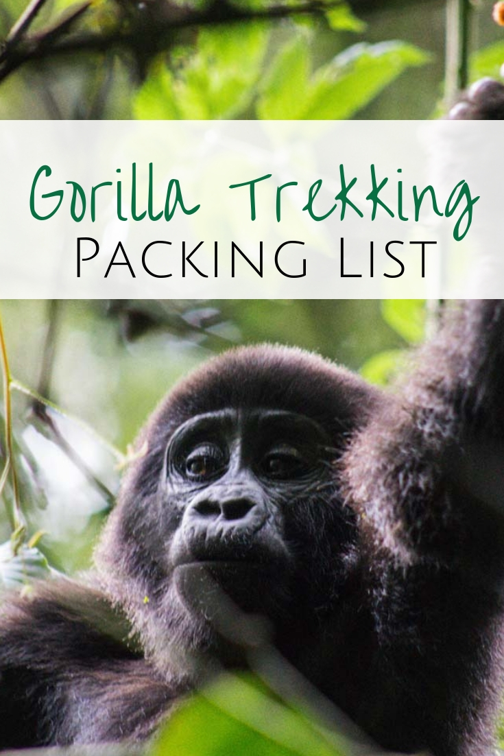 Heading to Uganda, Rwanda or Congo for a gorilla trek and don't know what you will need? My complete packing list for trekking clothes when hiking in the rainforest.  #packinglist #trekkingclothes #hikinggear #gorilla #uganda  What to pack for gorilla trekking | Hiking clothes for the jungle | Trekking clothes for Uganda | What to pack for Uganda | Gorilla Trekking clothes | Rainforest Hiking Equipment